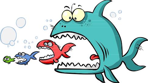 13 may 2015 binny lane for Dreaming of eating fish